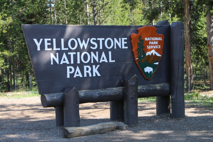 Yellowstone National Park – Road trip Ouest Canada et USA#9