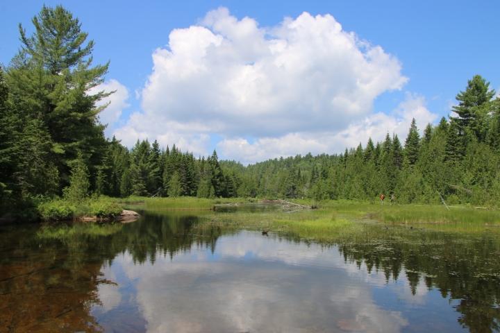 Un dimanche au parc national de la Mauricie – Road trip Québec#2