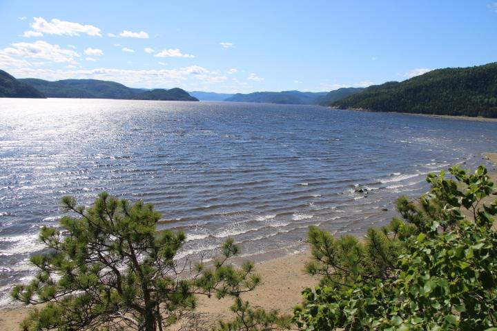 Observer les bélugas au Fjord Saguenay – Road Trip Québec#4